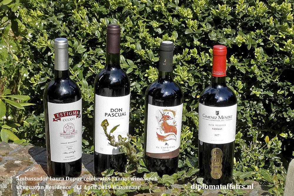 4. Ambassador Laura Dupuy celebrates Tannat wine week Uruguayan Residence - 11 April 2019 Wassenaar